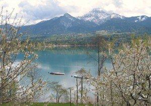 die Natur malt bunte Bilder am See