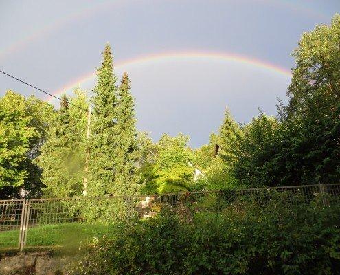 Überraschung an einem Regentag - ist auch mal schön