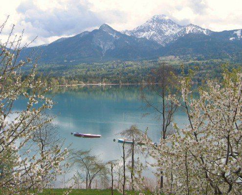 Frühlingsstimmung am See