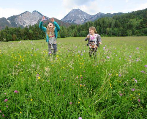 großer Spielplatz in der Natur mit Mittagskogel und Ferlacher Spitze