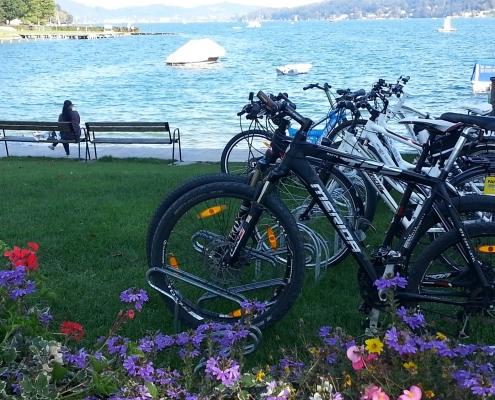 Fahrräder im Park - Strand inVelden